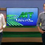 MT Rural: cultivo do grão de bico anima produtores no oeste de MT